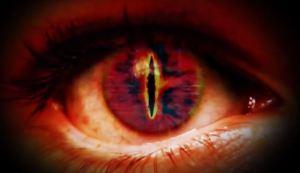 Auge Repto